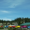 Colorful water trucks atWeed