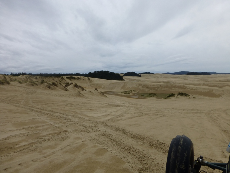 Climbing and descending throughout these impressive dunes