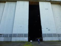 Little man Big door