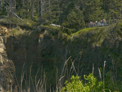 Viewpoint at Cape Meares
