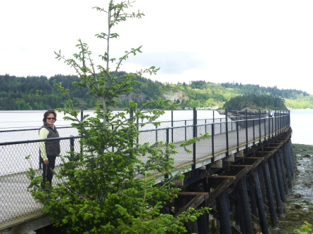 The trestle across the bay - nice walk or ride