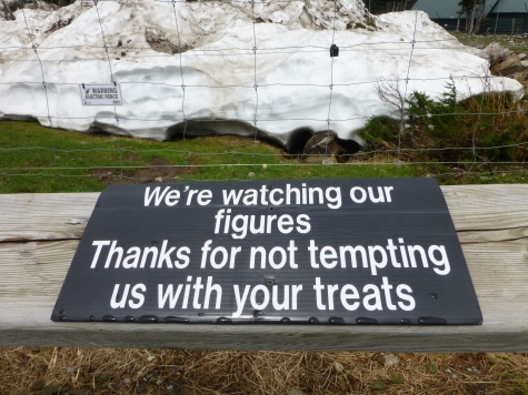 Mild caution about feeding animals