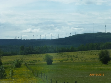 Bear Mountain Wind Farm