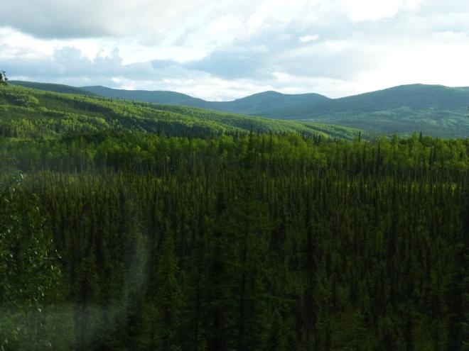 10 Pm at Dalton Highway Alaska