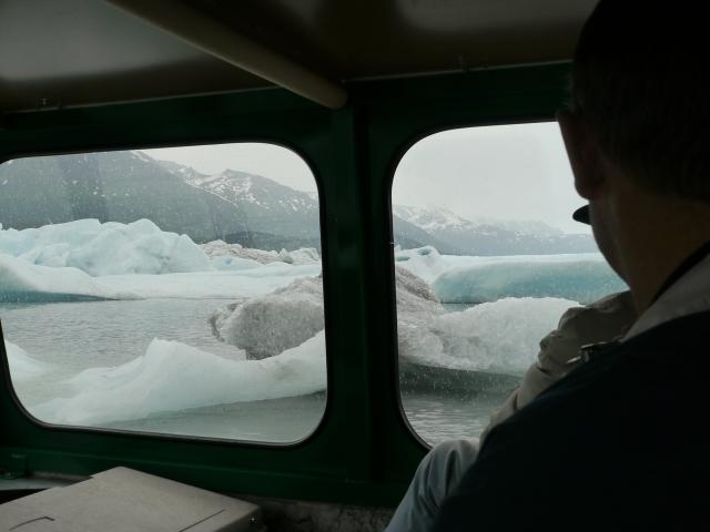 Knick Glacier, Palmer