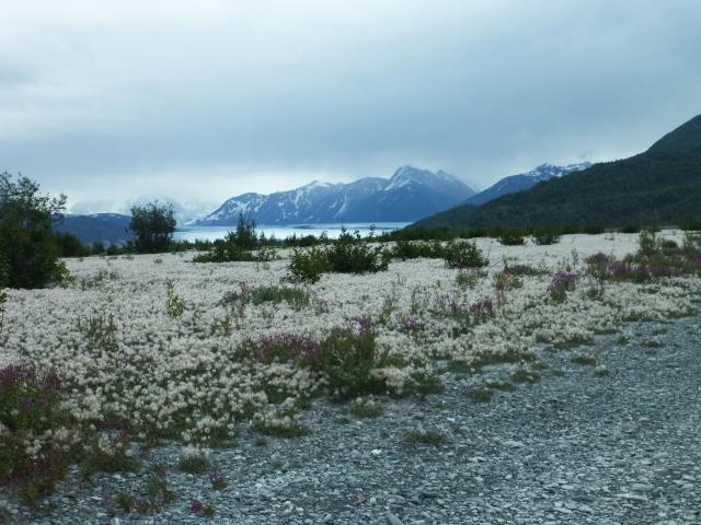 Knik Glacier, Palmer