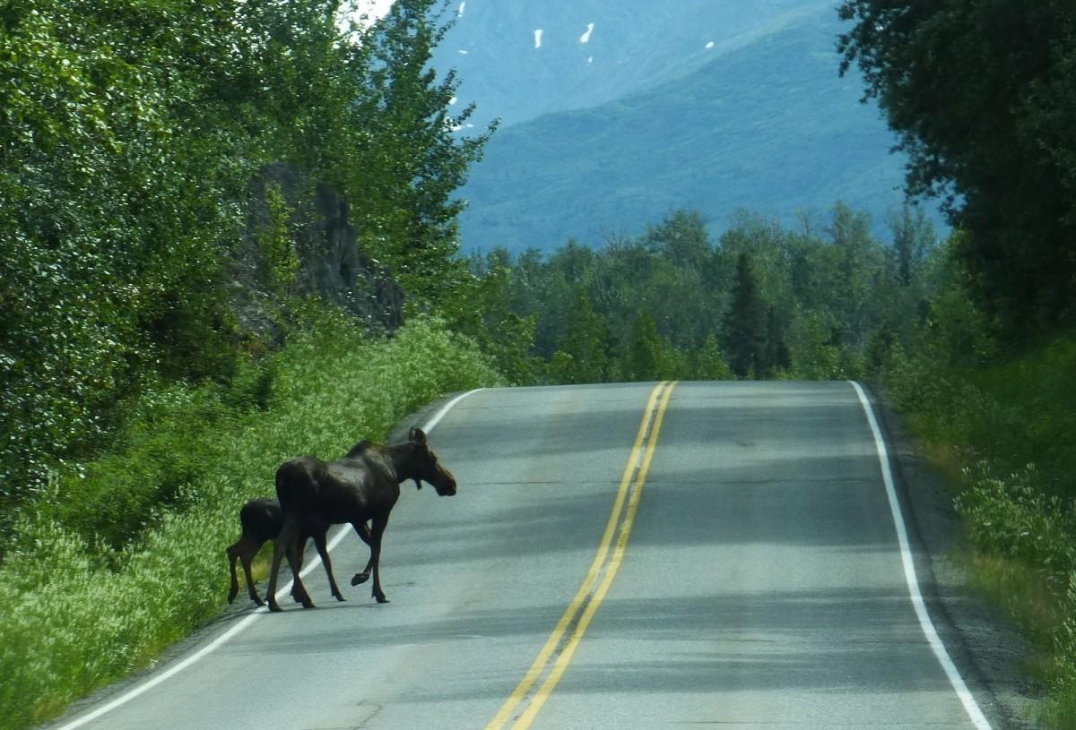 RVng in Alaska