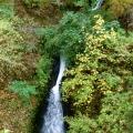 Sheppards Dell Falls
