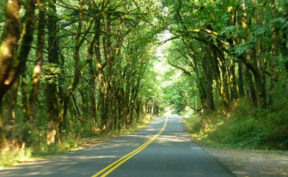 Highway Columbia River Highway