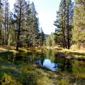 Donner Creek