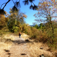 Rogue River Greenway Trail