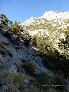 Upper Canyon Mt Whitmey