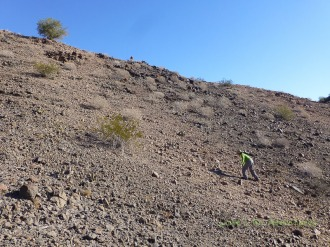 Pioneering a new trail