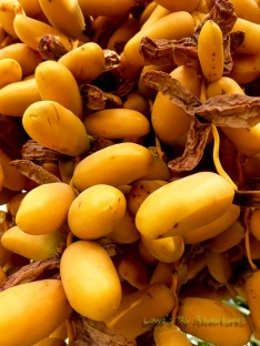 Yellow Dates