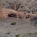 80 ft LizardGeoglyph
