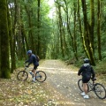 Historic Columbia River State Trail