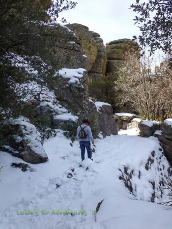 Hiking in the snow!