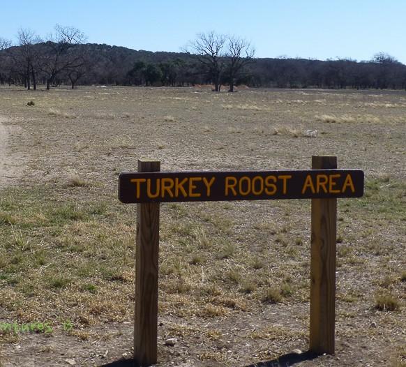 Turkey roost Area