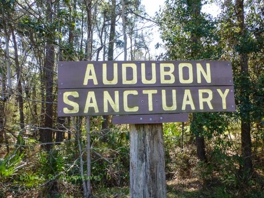 Audobon Sanctuary, Dauphin Island