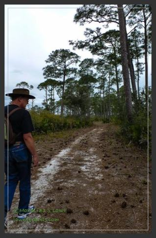 Jeff Friend Trail