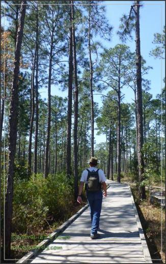 Tarkiln Bayou Trail