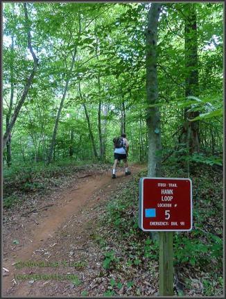 Hawk Trail
