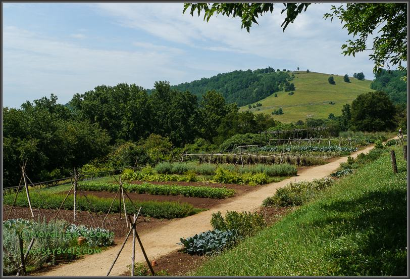 Thomas Jefferson's Vegetable Garden