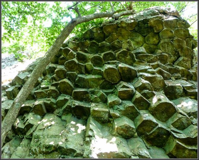 Columnar Joints at Compton Mountain