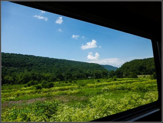 Mountain Greenery, Potomac Eagle