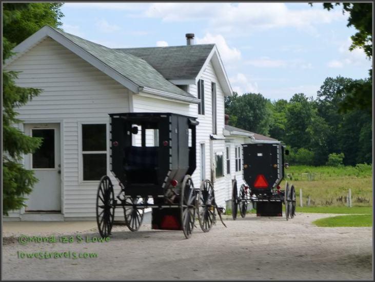 Amish Buggy  Driveway