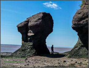 Flower Pots Rocks