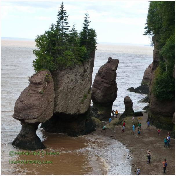 Mid Tide at Hopewell Rocks