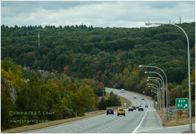 Autumn Foliage, I-95S