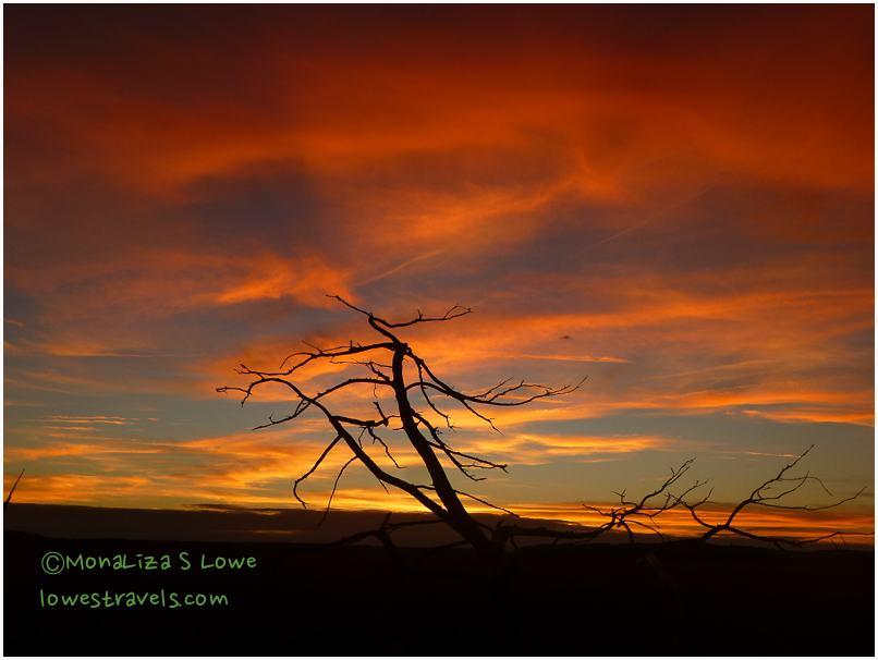 Fort McAllister Sunset