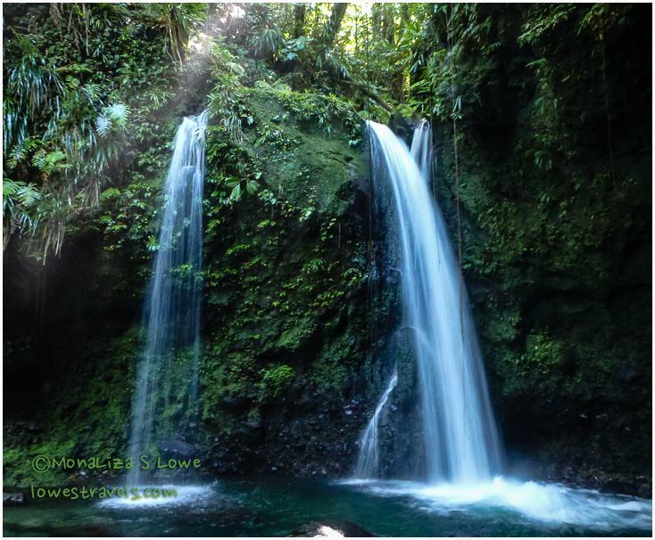 Hibiscus Water Falls