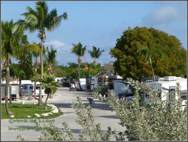 Sunshine RV Resort, Big Pine Key