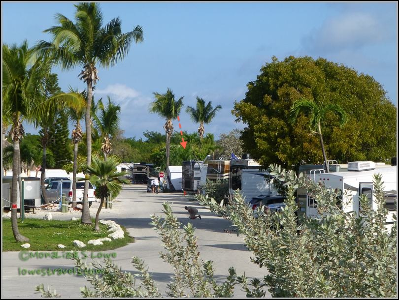 Sunshine RV Resort, Big Pine Key