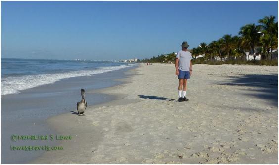 Bonita Beach FL