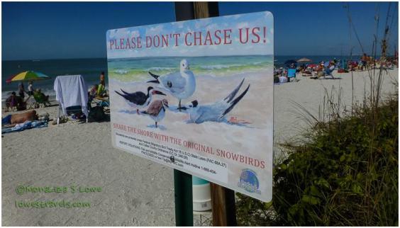 Bonita Beach, FL