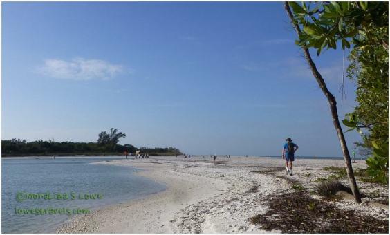 Barefoot Beach Preserve