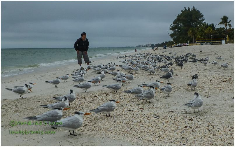 Bonita Beach, FLorida
