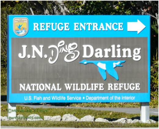 J.N. Ding Darling Refuge