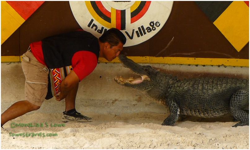 Alligator Demonstration, Miccosukee Indian