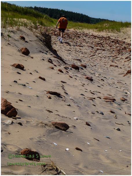 Cavendish Duneland Trail