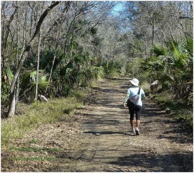 Crystal River Preserve State Park Trail
