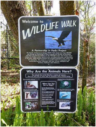Wildlife walk at Homosassa Springs Wildlife Park