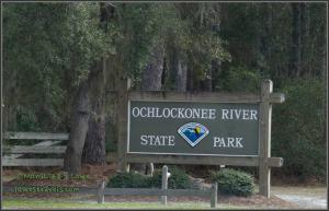 Ochlockonee River State Park