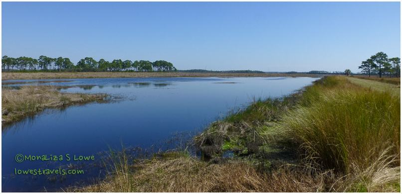 St Marks National Wildlife Refuge