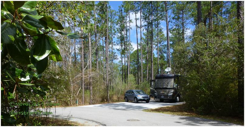 Site 26, Blackwater River State Park