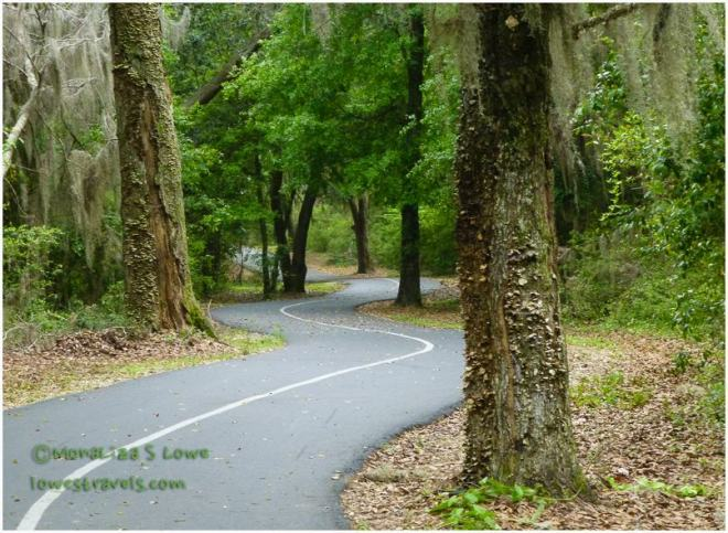 Gulf Oak Ridge Trail, Hugh S Branyon Trails